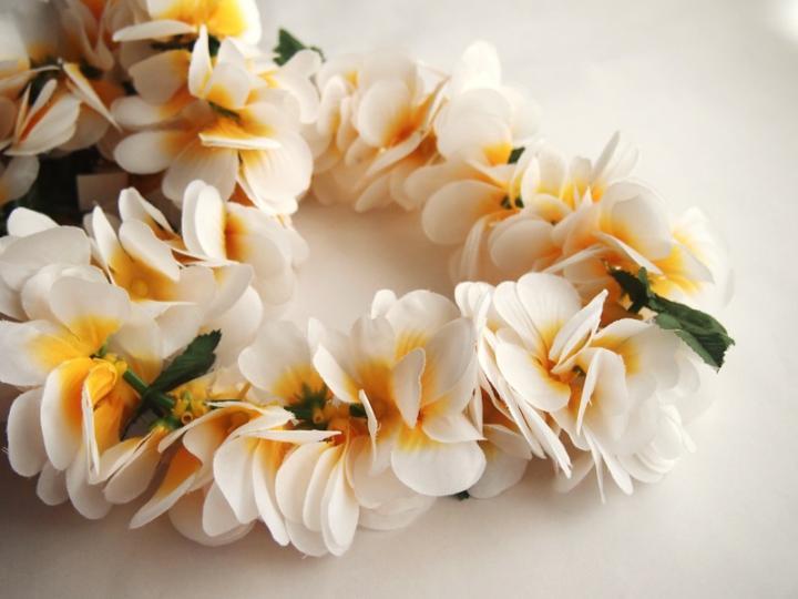 公園じゅうがハワイの花、木の実、鳥の羽で作られたレイでいっぱいに!