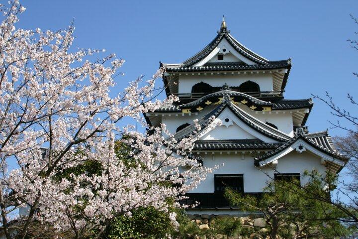 滋賀の旅には欠かせない「彦根城」と城下町を散策