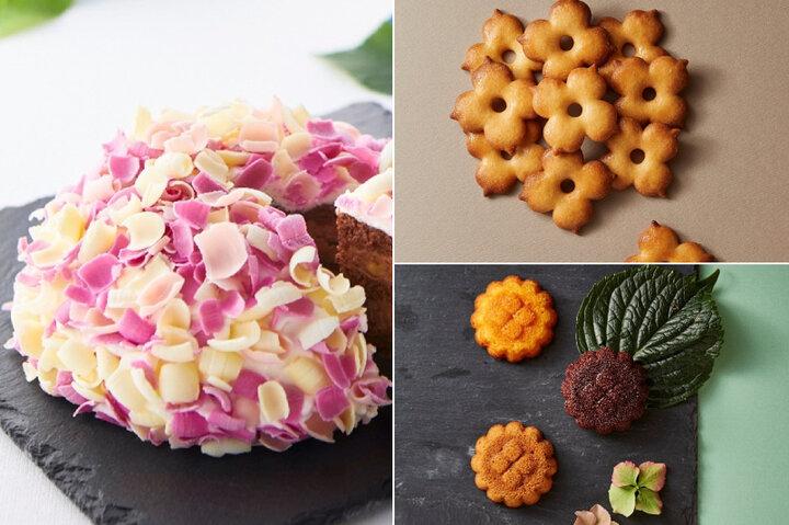 初夏を彩る鎌倉の新しい手土産♪ あじさいモチーフのケーキ「てまり花」限定発売