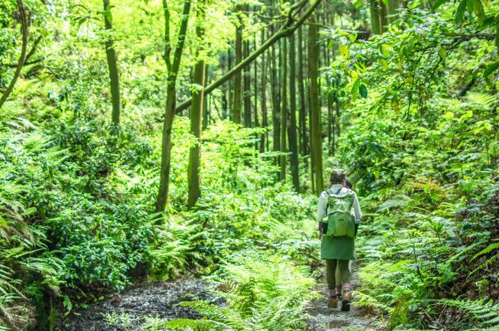 四角友里さんと初めての山歩きー都心から1時間で行ける新緑の三浦半島ハイク