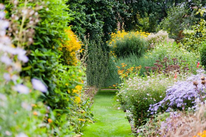 植物好きにはたまらない空間「チェルシーフィジックガーデン」をおさんぽ