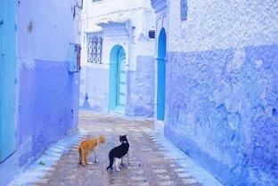魅惑の国モロッコでやりたいこと5つ