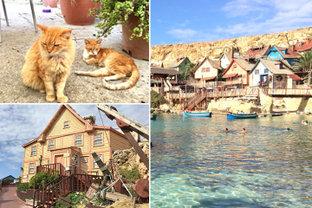 カラフルでポップな猫の島、地中海に浮かぶマルタ島の「ポパイヴィレッジ」