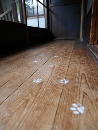 猫好きがときめくアイテムが店内のあちらこちらに