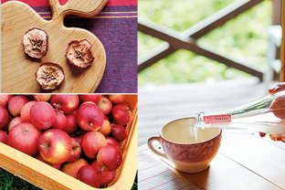 東信州へ秋の旅。甘くかぐわしいりんごの樹の下で味わうシードル&ジャム