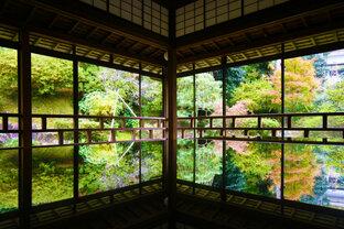 和倉温泉の静かな住宅街に佇む「白巖山 青林寺」で、自然と歴史に触れる旅を