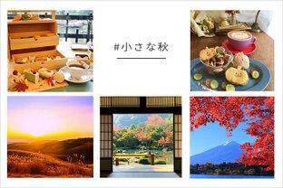 「#小さな秋」|写真投稿コンテスト