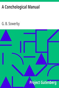 A Conchological Manual by G. B. Sowerby