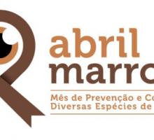Abril Marrom alerta para a saúde dos olhos e prevenção da cegueira