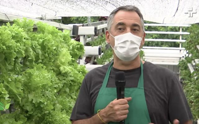 TV Cultura - Você sabe o que são as fazendas urbanas?
