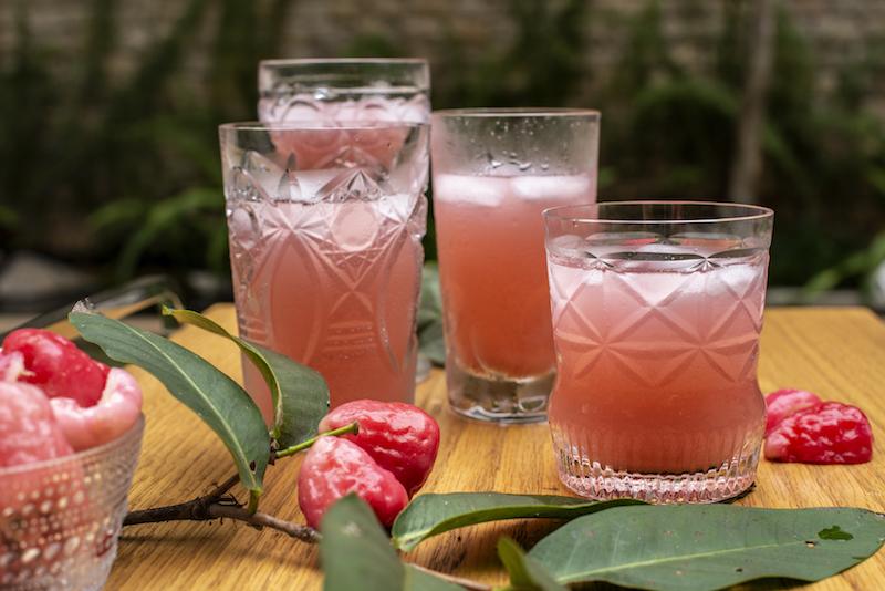 Suco de Jambo com Limão e Hortelã