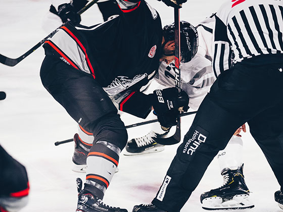The game, and the large organizing idea behind Stephen Smith's deeply personal 'Puckstruck,' sleeps in ponds and in the crooked limbs of trees overhead; we merely pluck a stick from the sky and skate over the frozen world to find ourselves and each other.