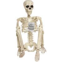 Crazy Bonez Skeleton, 36 Inches Tall, 1 Each