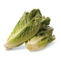 Fresh Lettuce Romaine, 1 Each