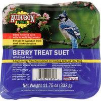 Audubon Park Wild Bird Food, Berry Treat Suet, 11.75 Ounce