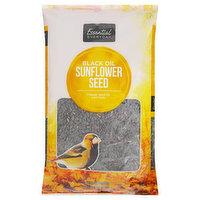 Essential Everyday Wild Bird Seed, Sunflower Seed, Black Oil, 5 Pound