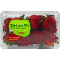 Driscoll's Strawberries, Organic, 16 Ounce