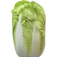 Fresh Chinese Napa Cabbage, 1 Pound