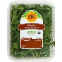 Wild Harvest Arugula, Organic, Baby, 5 Ounce