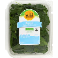 Wild Harvest Spinach, Organic, Baby, 5 Ounce