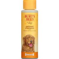 Burts Bees Shampoo, Oatmeal, 16 Ounce