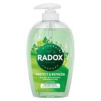 Radox Protect & Refresh Antibacterial Handwash 250 ml