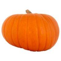 Dunnes Stores Monster Pumpkin