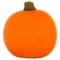 Dunnes Stores Munchkin Pumpkin