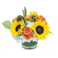 Happy Floral Arrangement, 1 Each