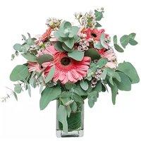Celebrate Floral Arrangement, 1 Each