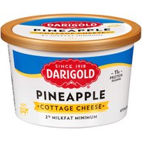 Darigold Pineapple Cottage Cheese, 16 Ounce