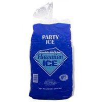 Hawaiian Ice Party Ice Cubes, 20 Pound
