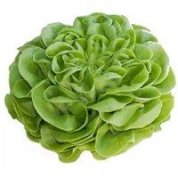 Boston Lettuce, Each, 0.4 Pound