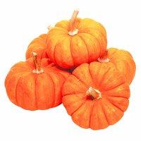 Mini Pumpkin, 1 Each
