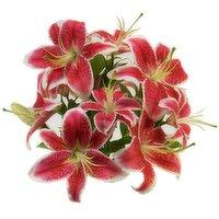 Oriental Lily Bunch, 3-stem, 1 Each
