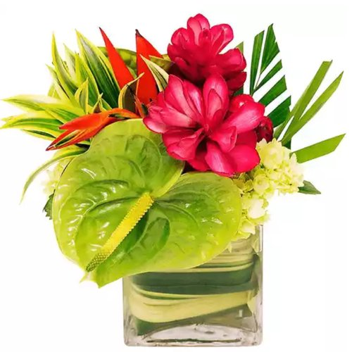 Tropical arrangement of locally grown flora.