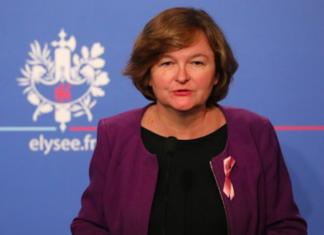 Nathalie Loiseau chat brexit