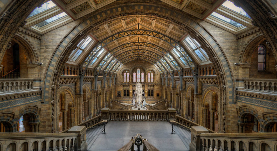 Edifices Londres Musee Histoire Naturelle