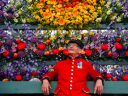 chelsea flower show londres 2019