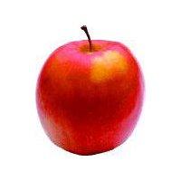 Apple SnapDragon, 6 Ounce