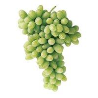 Seedless Green Grapes, 1 Pound