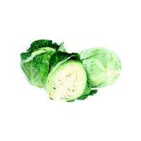 Green Cabbage, 1 ct, 3.5 Pound