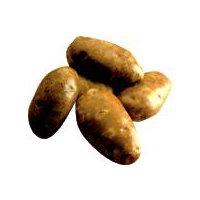 Russet Baking Potato, 12 Ounce