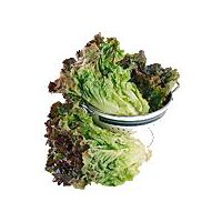 Red Leaf Lettuce, 9 Ounce