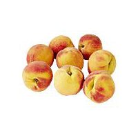 Apricot 1 ct, 3 Ounce