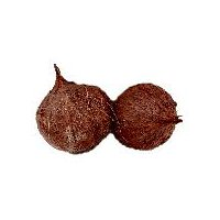 Coconut 1 ct, 1 Each