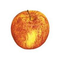 3lb bag of Gala Apples.