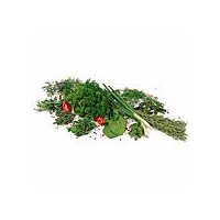 Delicious spiced herb used to flavor meals with an aromatic fragrance