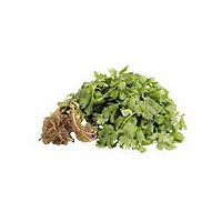 Flat parsley leaves that have a sweet, herbaceous flavor.
