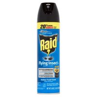 Raid Flying Insect Killer - Outdoor Fresh Scent, 18 Ounce